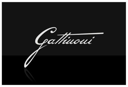 А: Gattinoni.  Q:Сколько раз ты влюблялась.
